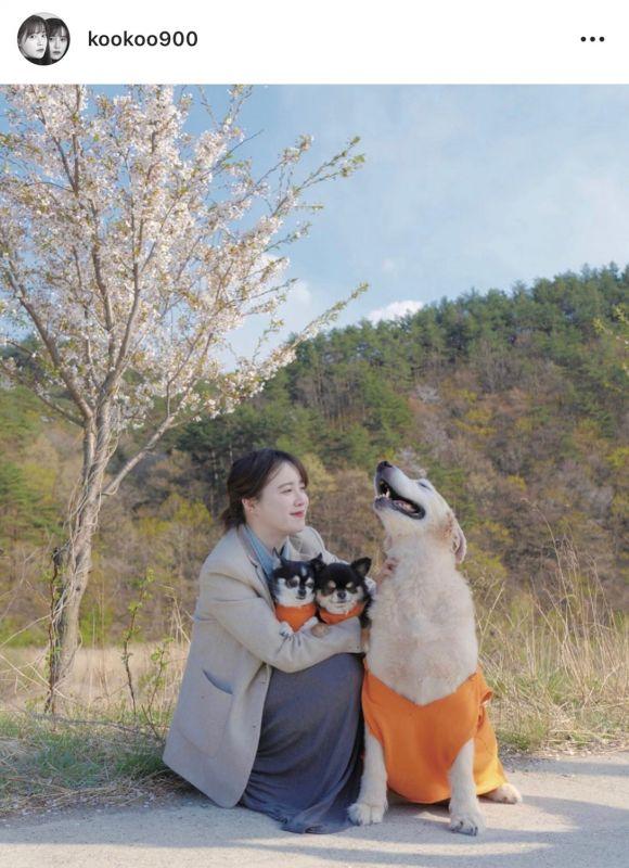 Goo Hye Sun เลิก หย่า Ahn Jae Hyun