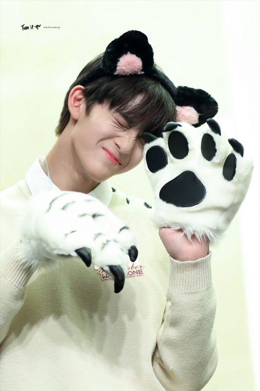 HAPPY_BAEBAE_DAY Baejinyoung