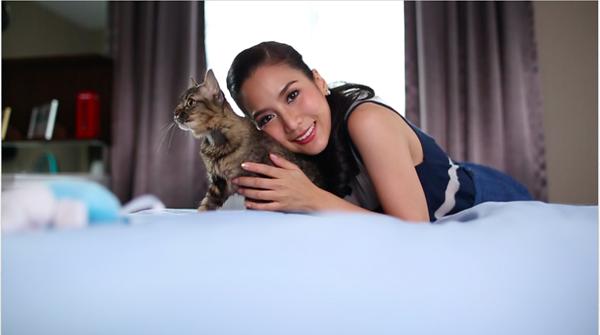 #WorldCatDay #วันแมวโลก ดาราดัง วันแมวโลก สุดเลิฟ อิจฉา  #aleynathecat