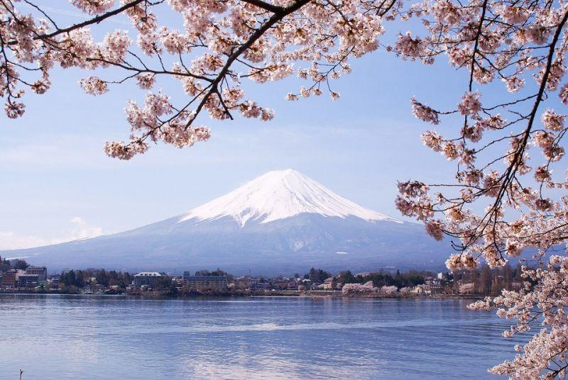 ดารา เที่ยว ญี่ปุ่น