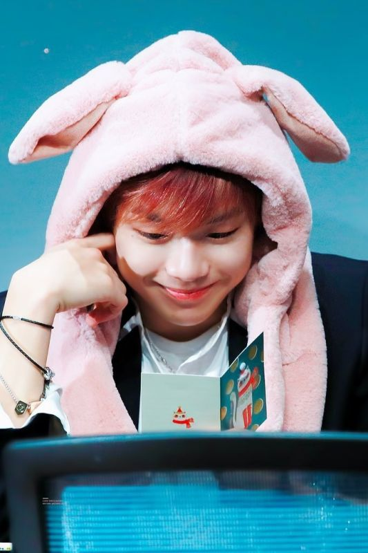 Kang Daniel ทาสแมว Daniel_You_Are_A_Cat