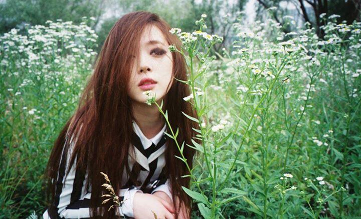 ไอดอล เกาหลี บันเทิง ศิลปิน ดารา K-Pop นักร้อง แอนตี้แฟน