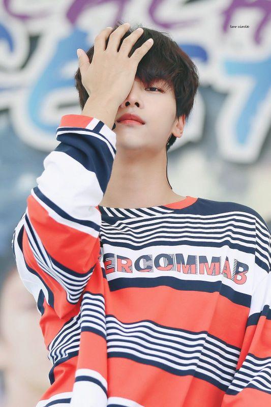 Park Bo Gum Exo VIXX